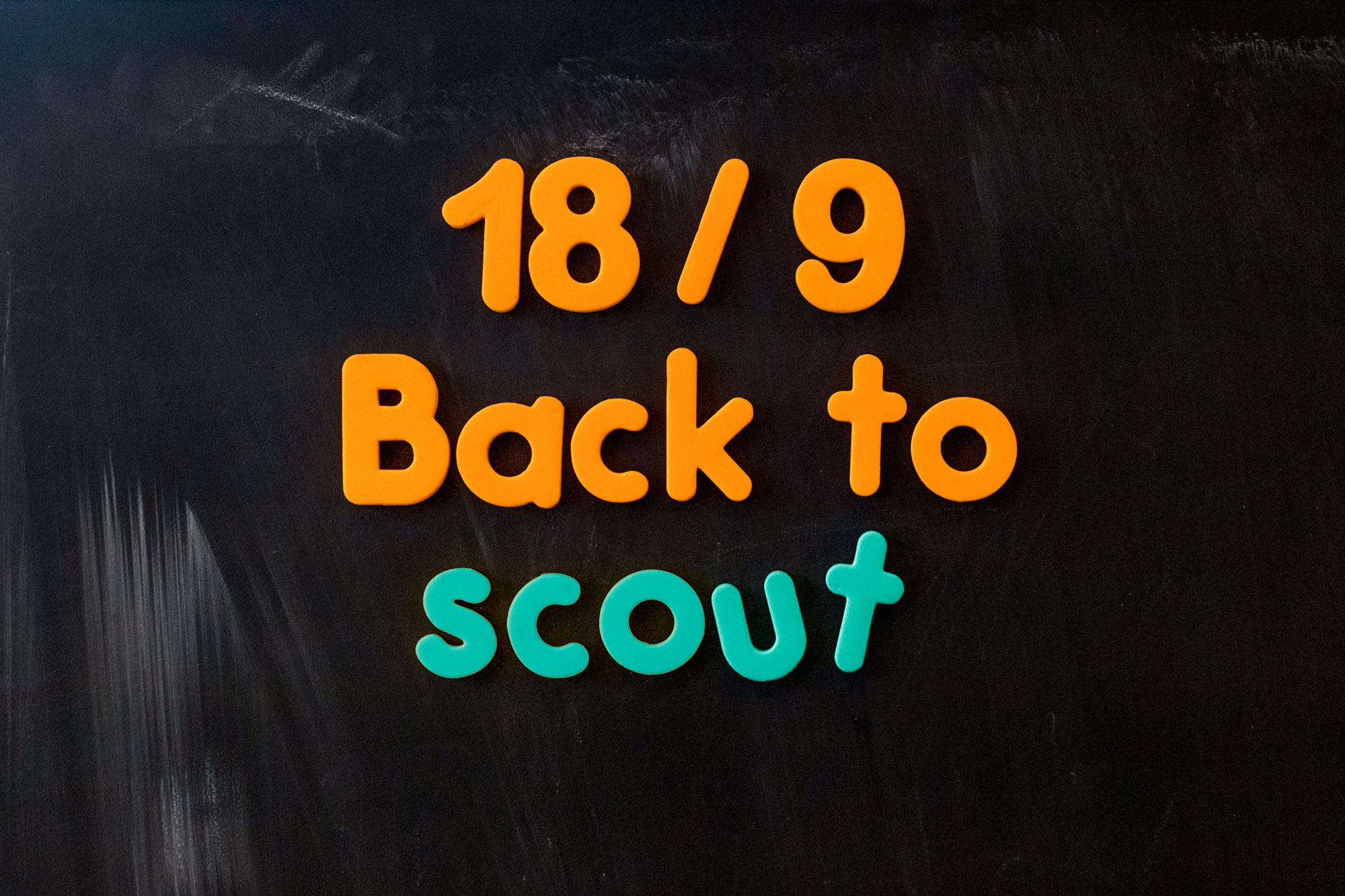 Back to scout 2021